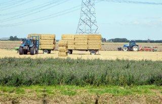 Boeren+noemen+vergroening+oplossing+voor+platteland