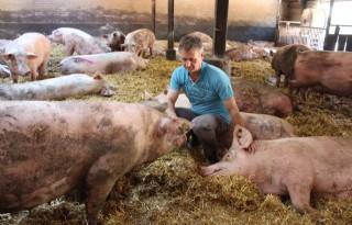 Varkensboer focust op terugdringing uitval