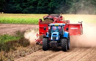 Aardappelsector in ban van moeizame oogst