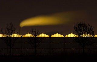 Glastuinbouw+zoekt+alternatieven+voor+Gronings+gas