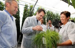 Van Dam trapt zeven duurzame gewasbeschermingproeven af
