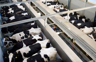Alleen+Duitse+en+Poolse+melk+kostprijs+hoger+dan+Nederland