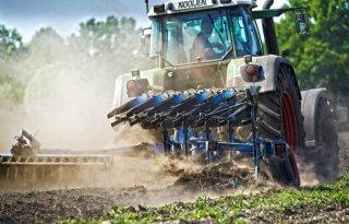 15+miljoen+euro+weerschade+bij+groentetelers