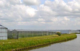Gemeente+Westland+geeft+gas+in+tuinbouwtransitie