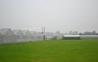 Ondernemersverkenningen+in+Greenport+Aalsmeer