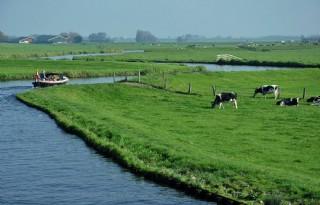 Scherper toezicht Rijnland op gedrag bij slootkant