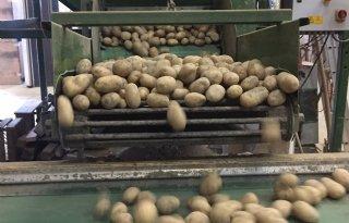 Emmeloord+wil+aardappelmuseum