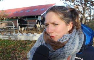 TV: Boeren geven Van Dam onvoldoende