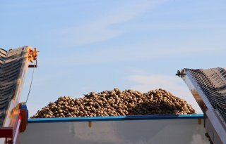 Vraag+uit+Belgi%C3%AB+stuwt+aardappelexport