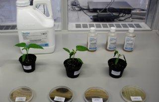 Van+Dam+wil+structurele+oplossing+biomiddelen
