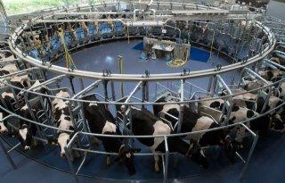 Protocol+op+melkveebedrijf+zet+data+om+in+actie