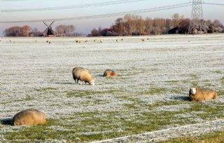 Ontheffingen in Drenthe voor lichtbak