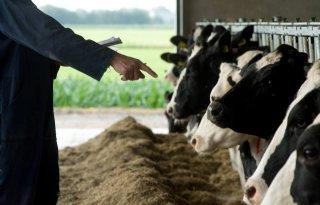 Afspraken over fiscale gevolgen fosfaatregels