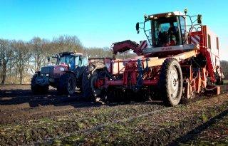 Drenthe proefgebied duurzamere bollenteelt