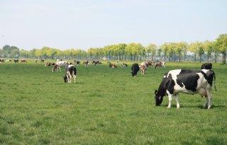 Zoeken+naar+winst+in+landbouw+met+natuur