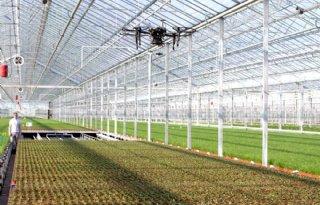 HortiHeroes+trekt+talenten+aan+voor+Food+%26amp%3B+Flower+Industry