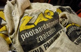 Aardappelbedrijven+ZAP+en+Semagri+samen+verder