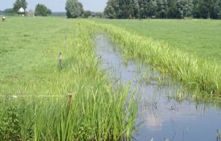 Boer+als+waterbeheerder+goed+voor+natuur