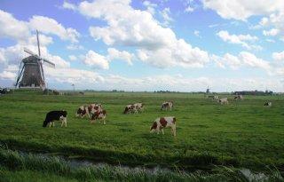 Agrarische+sector+verdient+volwaardige+plek+Noord%2DHolland