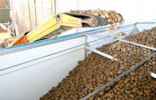 Fontane+zorgt+voor+beleving+op+aardappelmarkt