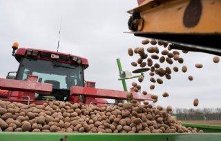 %27Hybride+aardappel+is+duurzaam+en+biedt+voedselzekerheid%27