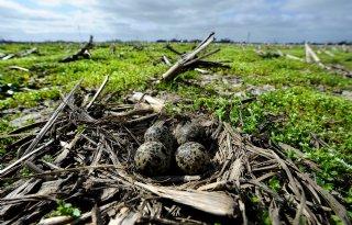 Biodiversiteit+Overijssel+laat+wisselend+beeld+zien