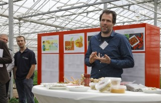 Specerijenteelt in Nederlandse kas biedt kansen