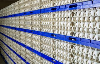 Kamer+kiest+voor+behoud+controle%2Dinstituut+eieren
