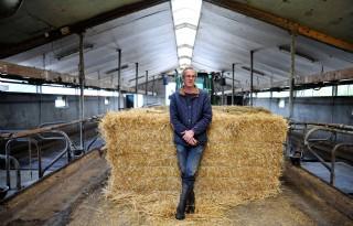 Boer+ziet+uitdaging+in+fokken+Jersey+stieren