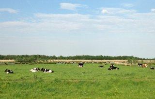 Noord%2DHolland+verpacht+1%2E700+hectare+landbouwgrond