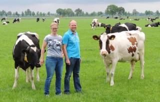 Toekomst melkveebedrijf onzeker door hoogveenbos