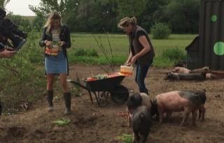 RTL4+brengt+met+Foodmakers+agrosector+in+beeld