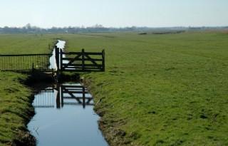Brakke+polder+Westzaan+komt+dichterbij