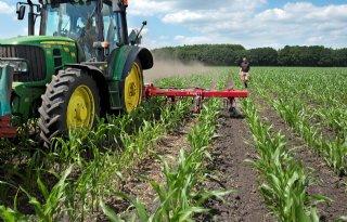 Vlinderbloemig vanggewas goed voor bodemvruchtbaarheid