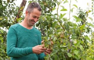 Fruitteler Menso Tijssen voorziet 'geen topoogst'