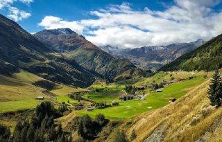 Zwitsers stemmen verbod op onthoornen weg