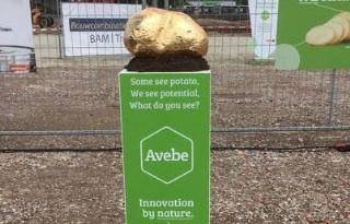 Avebe bouwt innovatiecentrum op Groningse campus