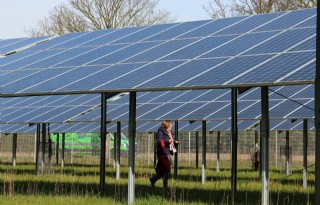 Grootste+zonnepark+Randstad+rekt+de+regels+niet+op
