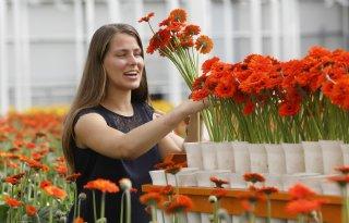 Consument+verwacht+dat+bloem+zeker+acht+dagen+mooi+is