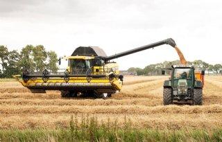 Agrifirm betaalt 15 procent meer in graanpool