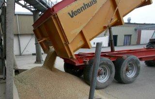 CZAV betaalt hogere voorschotprijzen voor graan