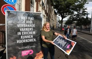 Wakker Dier wil dat nieuw kabinet stalbranden aanpakt