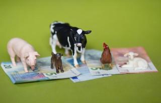 Burgers+plus+boer+is+nieuw+bedrijf