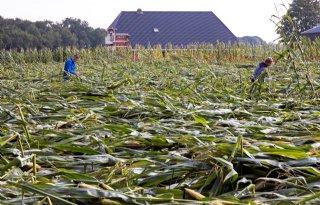 Klimaatverandering+bedreigt+Europese+landbouw