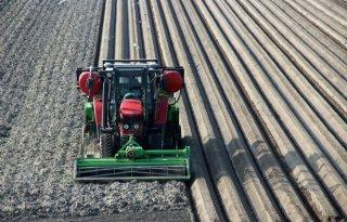 Aardappelketen+wil+mondiale+positie+versterken