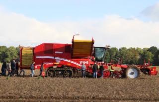 Aardappelsector+lift+mee+op+positieve+stemming
