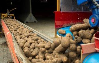 Recordoogst++aardappelen+Noordwest%2DEuropa