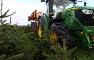 Pirelli+trekkerband+voor+lelie%2D+en+kerstbomenkweker