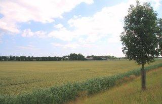 Provincie+koopt+boeren+Rhoon+uit