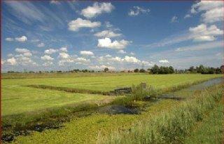 Planbureau+acht+landbouwakkoord+noodzakelijk